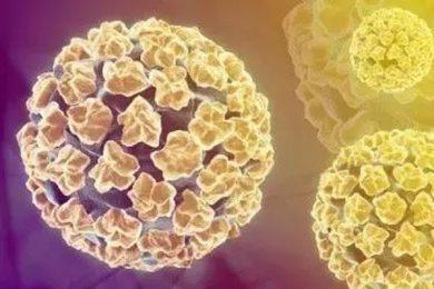 人類乳頭狀瘤病毒